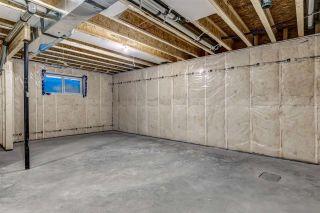 Photo 44: 7046 NEWSON Road in Edmonton: Zone 27 House for sale : MLS®# E4221723
