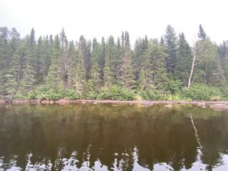 Photo 3: 57 Waterfront Road in Red Lake: Vacant Land for sale : MLS®# TB212255