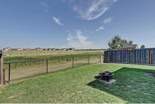 Photo 36: 784 LUXSTONE Landing SW: Airdrie House for sale : MLS®# C4160594