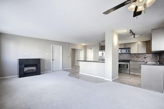 Photo 15: 302 429 14 Street NW in Calgary: Hillhurst Apartment for sale : MLS®# A1075167
