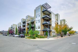 Photo 50: 407 10531 117 Street NW in Edmonton: Zone 08 Condo for sale : MLS®# E4265606