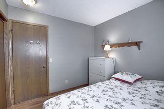 Photo 28: 111 HAWKHILL Court NW in Calgary: Hawkwood Detached for sale : MLS®# A1022397