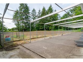 Photo 18: 3873 216 STREET in Langley: Brookswood Langley House for sale : MLS®# R2114161