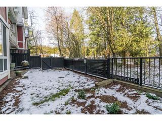 """Photo 20: 217 6833 VILLAGE Green in Burnaby: Highgate Condo for sale in """"CARMEL"""" (Burnaby South)  : MLS®# R2241064"""
