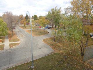 Photo 29: 302 476 Kenaston Boulevard in Winnipeg: River Heights Condominium for sale (1D)  : MLS®# 202101060