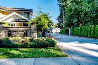"Photo 1: 53 14655 32 Avenue in Surrey: Elgin Chantrell Townhouse for sale in ""Elgin Pointe"" (South Surrey White Rock)  : MLS®# R2516676"