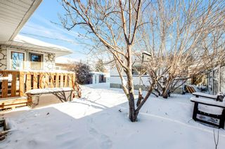 Photo 25: 2408 39 Street SE in Calgary: Forest Lawn Detached for sale : MLS®# A1070612