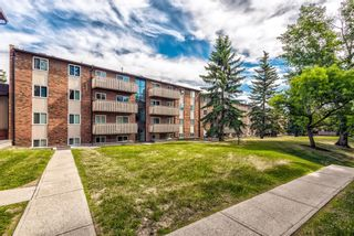 Photo 32: 432 11620 Elbow Drive SW in Calgary: Canyon Meadows Apartment for sale : MLS®# A1149891