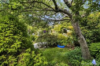 Photo 16: 1228 Chapman St in VICTORIA: Vi Fairfield West House for sale (Victoria)  : MLS®# 730427