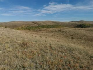 Photo 18: For Sale: 270048 Twp Rd 10, Cardston, T0K 0K0 - A1152942