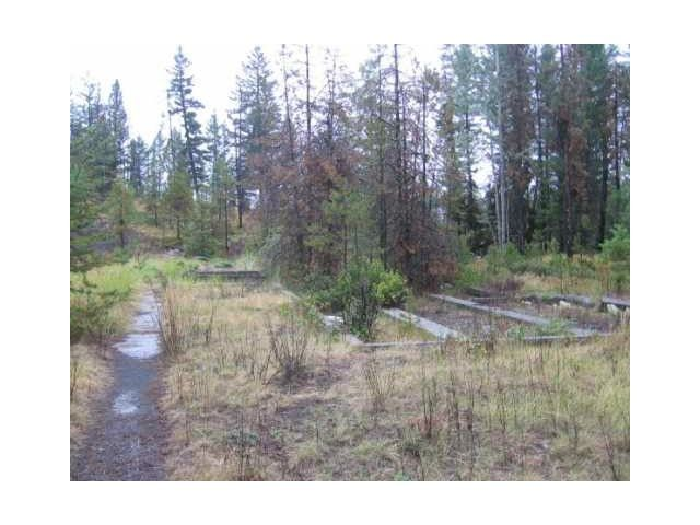 Photo 6: Photos: 1537 CHASM Road: 70 Mile House Land for sale (100 Mile House (Zone 10))  : MLS®# N232330