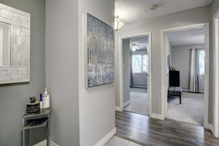 Photo 14: 308 617 56 Avenue SW in Calgary: Windsor Park Apartment for sale : MLS®# A1134178