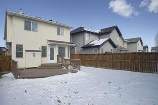 Photo 37: 33 Brightondale Park SE in Calgary: New Brighton Detached for sale : MLS®# A1088765