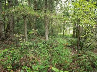 Photo 2: Lot 5 Inverness Rd in North Saanich: NS Ardmore Land for sale : MLS®# 853687