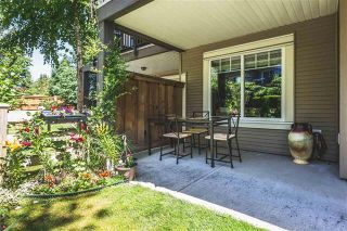 Photo 13: 18 8250 209 B Street in Langley: Condo for sale : MLS®# R2181074