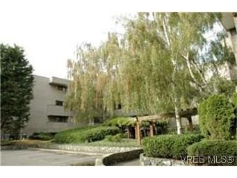 Main Photo: 208 1366 Hillside Ave in VICTORIA: Vi Oaklands Condo for sale (Victoria)  : MLS®# 447630