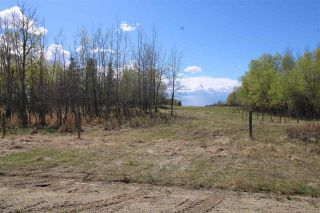 Photo 5: 57032 RR 50: Rural Lac Ste. Anne County Rural Land/Vacant Lot for sale : MLS®# E4244016