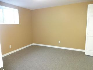 Photo 21: 164 Dovercliffe Way SE in Calgary: Dover Detached for sale : MLS®# A1116504