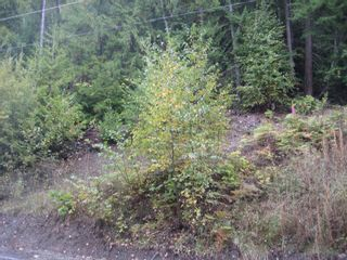 Photo 4: 12 Vickers Trail in Anglemont: Land Only for sale : MLS®# 10055802