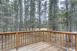 Photo 40: 15 Wolf Drive: Bragg Creek Detached for sale : MLS®# A1105393