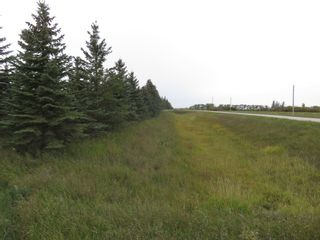 Photo 4: 0 Centreline Road: RM Springfield Vacant Land for sale (R04)  : MLS®# 202103923