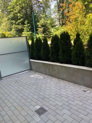"""Photo 9: 104 7428 ALBERTA Street in Vancouver: South Cambie Condo for sale in """"Belpark"""" (Vancouver West)  : MLS®# R2527858"""