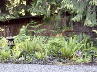 Photo 28: 116 BAYNES DRIVE in FANNY BAY: CV Union Bay/Fanny Bay Manufactured Home for sale (Comox Valley)  : MLS®# 702330