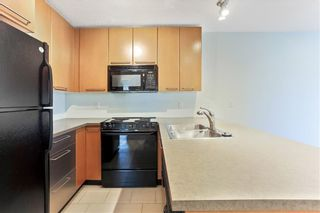 Photo 4: 315 35 RICHARD Court SW in Calgary: Lincoln Park Apartment for sale : MLS®# C4188098