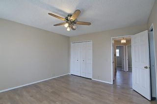 Photo 15: 8 Martinridge Way NE in Calgary: Martindale Detached for sale : MLS®# A1141248