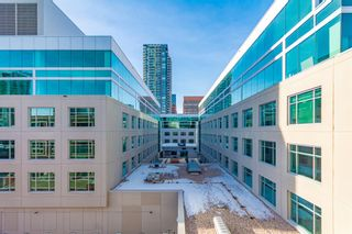 Photo 17: 304 1117 1 Street SW in Calgary: Beltline Apartment for sale : MLS®# A1060386