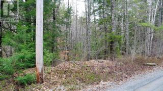 Photo 3: Lot Medway River Road in Mill Village: Vacant Land for sale : MLS®# 202108227