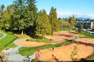 """Photo 36: 102 13963 105A Avenue in Surrey: Whalley Condo for sale in """"HQ Dwell"""" (North Surrey)  : MLS®# R2507111"""