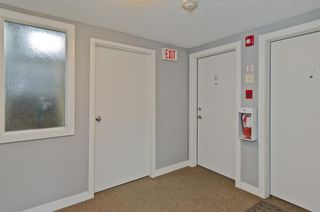 Photo 14: 6 609 67 Avenue SW in Calgary: Kingsland Apartment for sale : MLS®# A1077068
