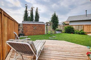 Photo 20: 110 Abalone Crescent NE in Calgary: Abbeydale Detached for sale : MLS®# A1127524