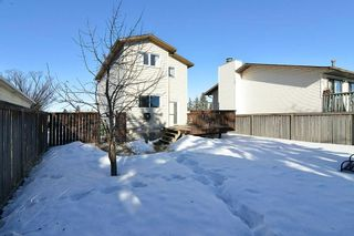 Photo 25: 139 CASTLEGLEN Road NE in Calgary: Castleridge House for sale : MLS®# C4170209