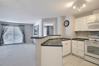 Photo 17: 2309 8 BRIDLECREST Drive SW in Calgary: Bridlewood Apartment for sale : MLS®# A1087394