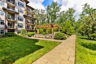 """Photo 33: 401 2495 WILSON Avenue in Port Coquitlam: Central Pt Coquitlam Condo for sale in """"Orchid Riverside Condos"""" : MLS®# R2579450"""