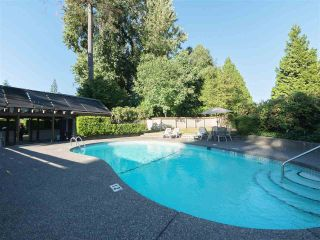 """Photo 17: 32 9101 FOREST GROVE Drive in Burnaby: Forest Hills BN Townhouse for sale in """"ROSSMOOR"""" (Burnaby North)  : MLS®# R2192598"""