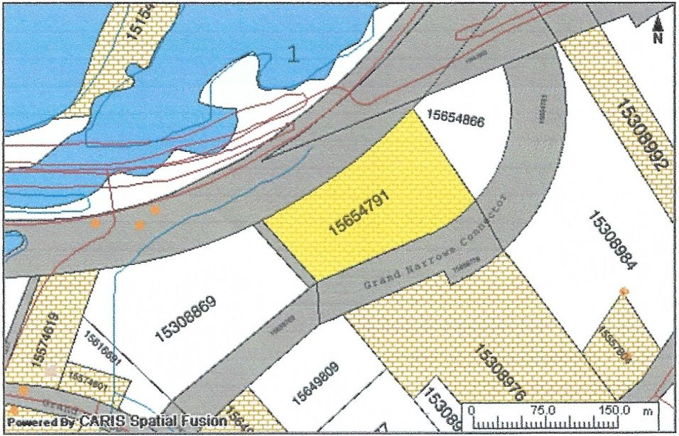 Main Photo: Lot Dogan Road in Grand Narrows: 207-C. B. County Vacant Land for sale (Cape Breton)  : MLS®# 202103787