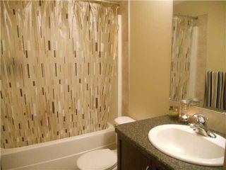 Photo 7: 3631 13 Street in EDMONTON: Zone 30 House for sale (Edmonton)  : MLS®# E3298085