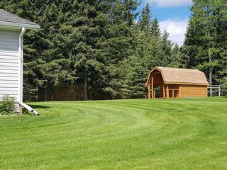 Photo 41: 5224 Township Road 292: Rural Mountain View County Detached for sale : MLS®# A1060781