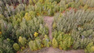 Photo 16: Hwy 11 & RR 53: Rural Parkland County Rural Land/Vacant Lot for sale : MLS®# E4265869