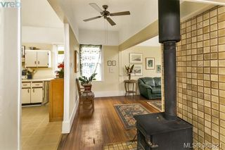 Photo 5: 1127 Chapman St in VICTORIA: Vi Fairfield West House for sale (Victoria)  : MLS®# 728825