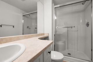 """Photo 17: 226 19750 64 Avenue in Langley: Willoughby Heights Condo for sale in """"THE DAVENPORT"""" : MLS®# R2590959"""