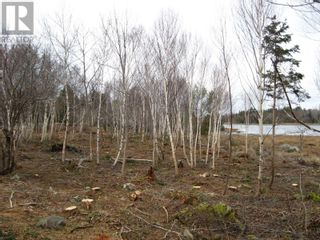Photo 10: Lot East Port Loop Road in East Port Medway: Vacant Land for sale : MLS®# 202000583