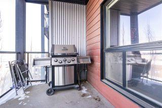 Photo 38: 306 10518 113 Street in Edmonton: Zone 08 Condo for sale : MLS®# E4261783