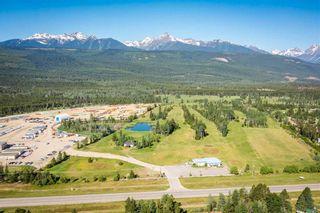 Photo 5: 1655 S 5 Highway in Valemount: Valemount - Town Industrial for sale (Robson Valley (Zone 81))  : MLS®# C8040501