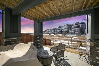 Photo 48: 59 Marquis Cove SE in Calgary: Mahogany Detached for sale : MLS®# A1087971