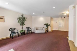 """Photo 32: 105 6440 197 Street in Langley: Willoughby Heights Condo for sale in """"Kingsway"""" : MLS®# R2603548"""