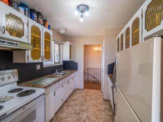 Photo 58: 3140 ROBBINS RANGE ROAD in Kamloops: Barnhartvale House for sale : MLS®# 163482